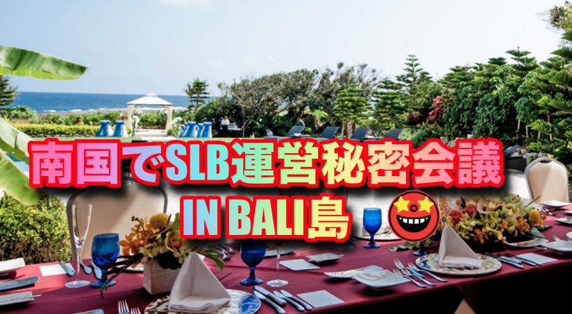 a9caaef85b2141be7198af8043dd6faa - SLB運営と打ち合わせや稼ぐに特化した重要な事 (IN BALI島)